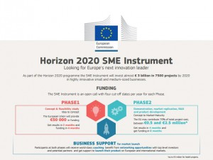 Sme_Inst_Infographic