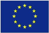 EU Flag small